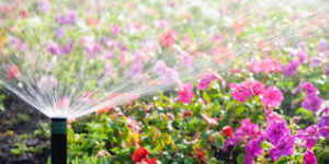 Irrigation Birmingham Al – Save Money This Spring