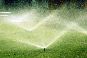 Landscaping Birmingham AL – The Investment of Irrigation