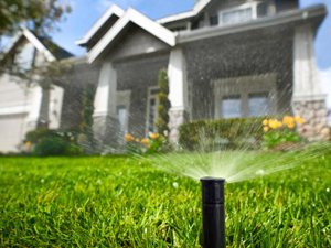 Landscaping Birmingham Alabama – Watering Your Landscape
