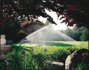 Landscaping In Birmingham - Irrigation Winterization and Start-Up