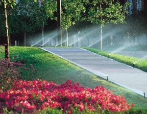 Irrigation Birmingham Alabama